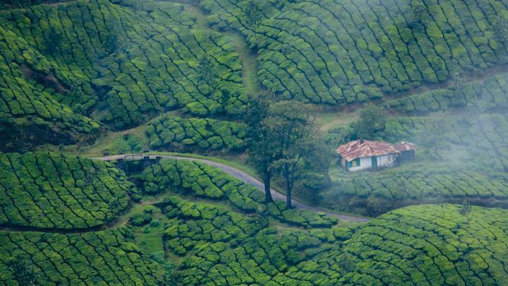 muunar tourist place in kerala