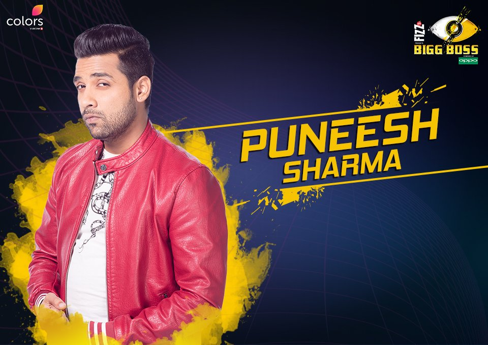 Bigg Boss 11: Who is Puneesh Sharma? Know About His Profile And Background